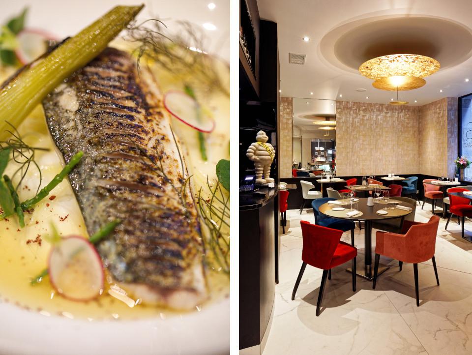 restaurant_lodas